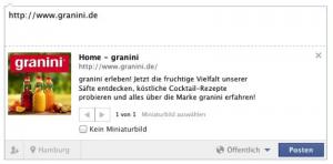 Facebook Snippet Granini