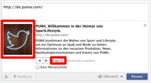 Facebook Snippet Puma